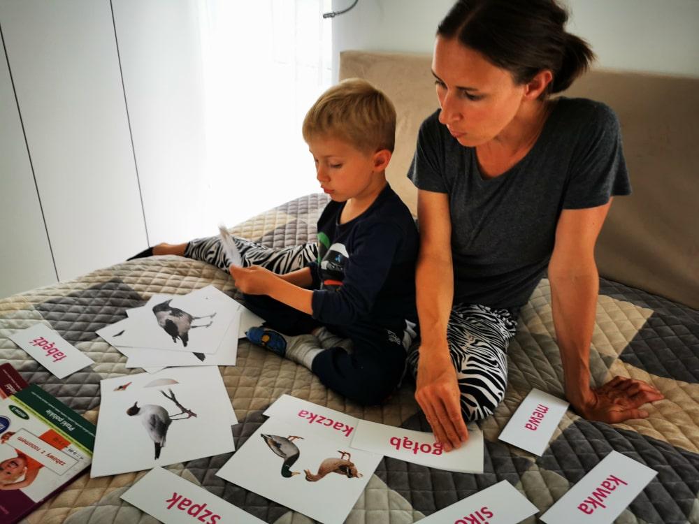 Flashcards Bity Inteligencji Wczesna Edukacja Czytanie Globalne Jak wspierać rozwój dziecka wwieku przedszkolnym
