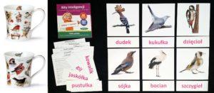 bity-inteligencji-ptaki-dr-aneta-czerska