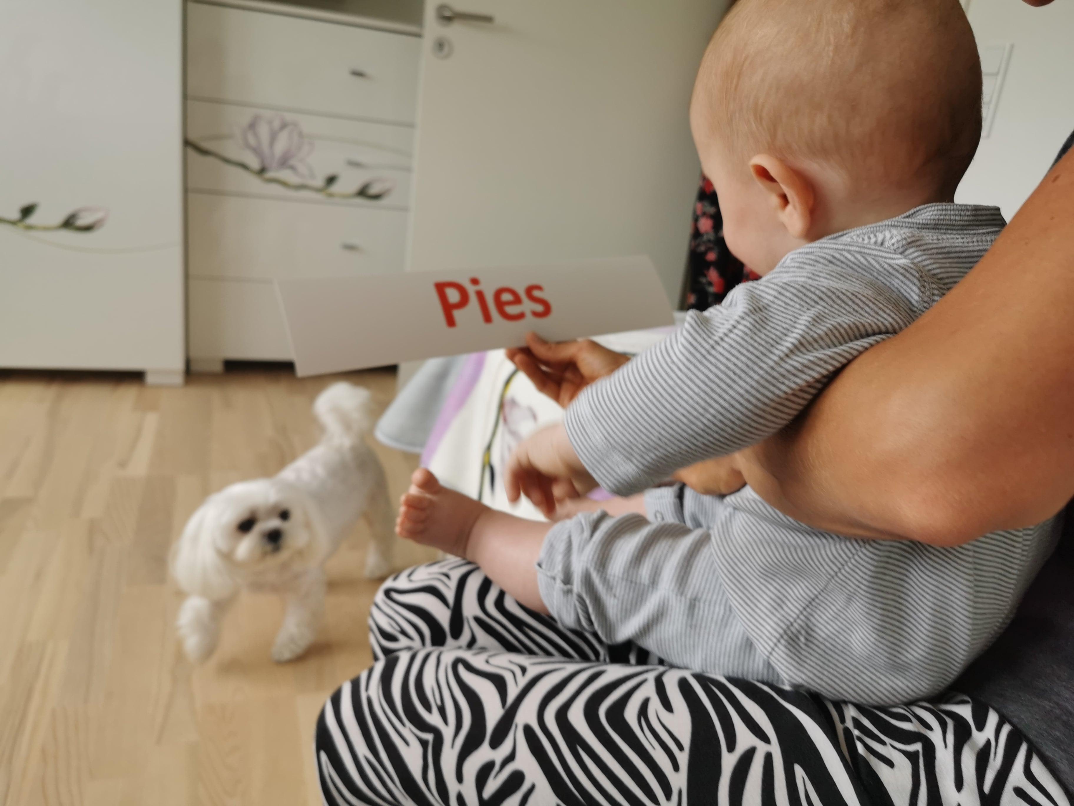karty donauki czytania dla niemowląt