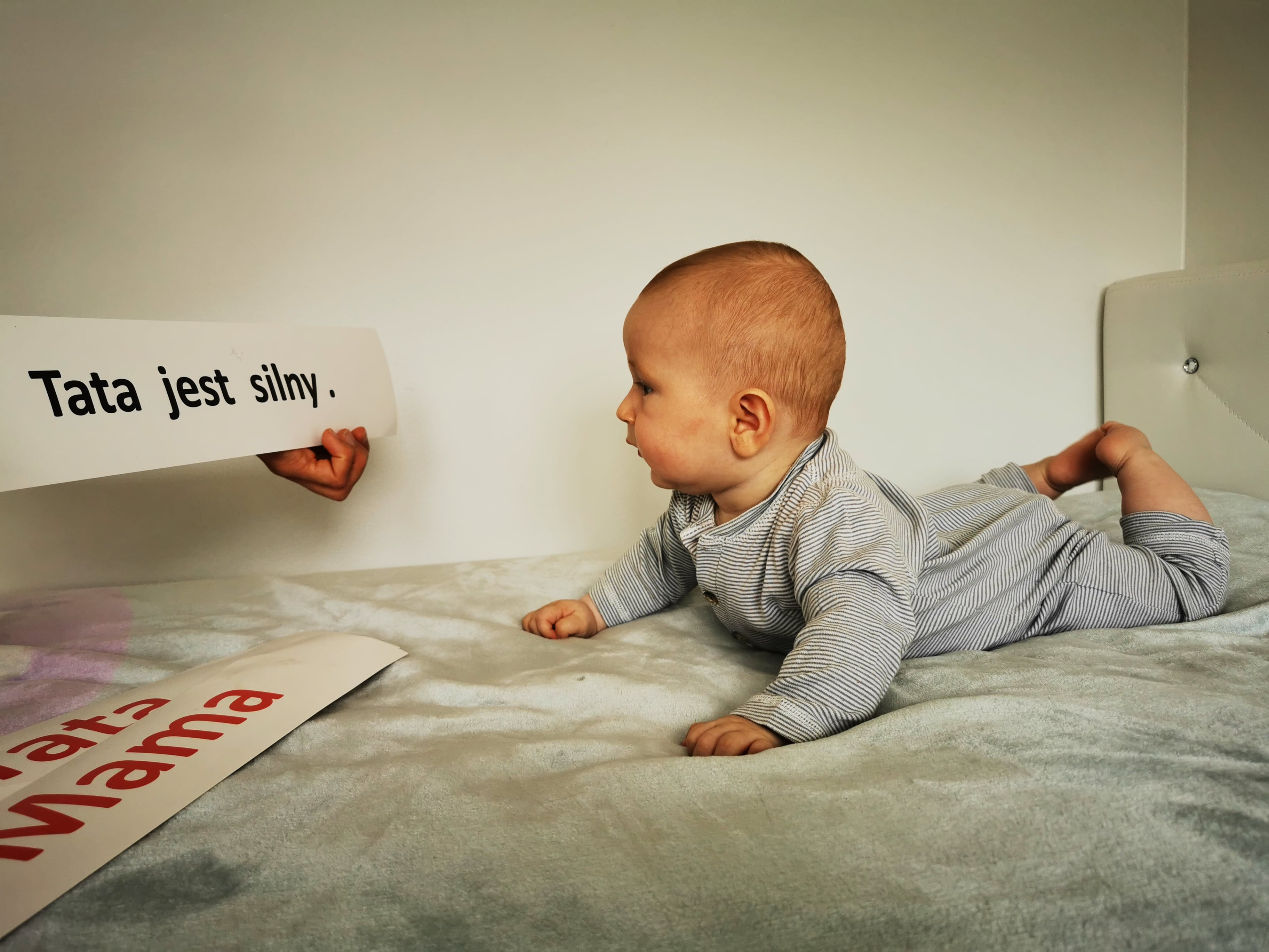 rozwój dziecka pierwszy rok życia niemowlę czyta karty donauki czytania