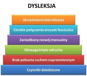 Zdiagnozuj dysleksję – zanim dziecko rozpocznie naukę szkolną