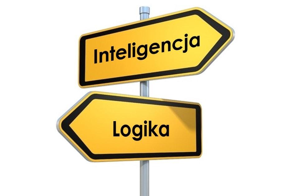 Jak rozwijać logiczne myślenie dziecka wpływ nainteligencję Definicja