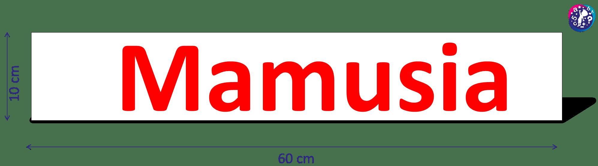 Karty DoNauki Czytania Metoda Domana Wymiary wyraz Mamusia