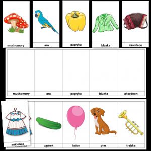 Karty Do Rozwoju Pamięci Dla Dzieci Ilustracje Wyrazy