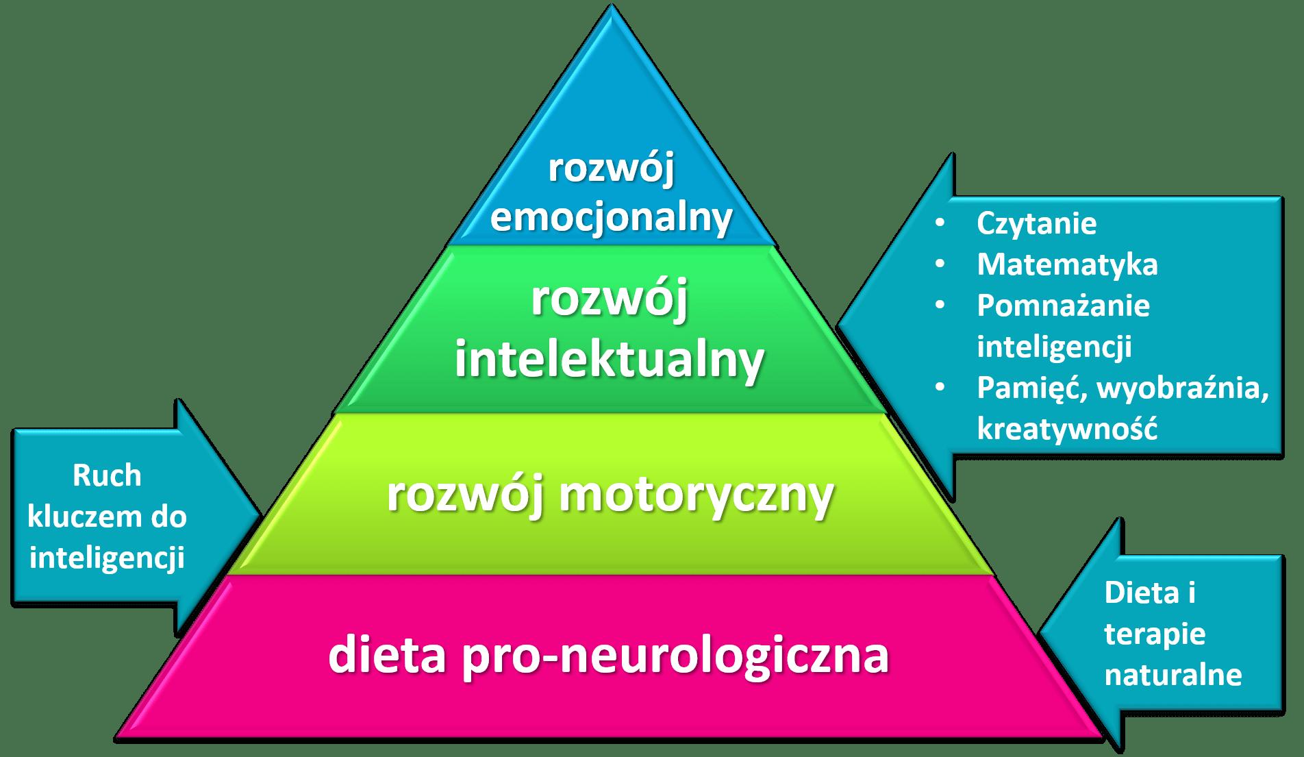 Piramida Rozwoju Dziecka Schemat Jak Wspierać Rozwoju Dziecka